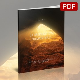 copy of La Méditation Primordiale (Livre papier)